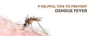 Dengue Fever Investigations
