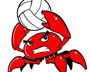 Red crab Calculator PLUS Crack
