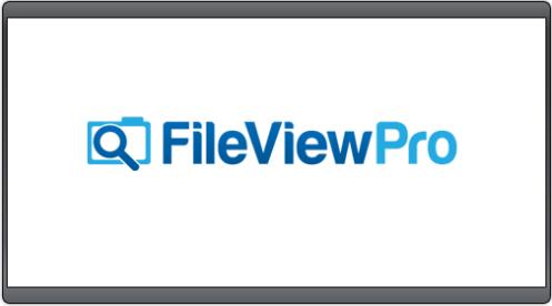 fileviewpro-2018-crack-with-keygen-free-download-latest-9862012
